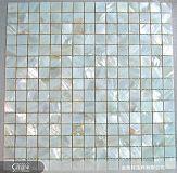金貝特生科的珍珠母貝(自然色)